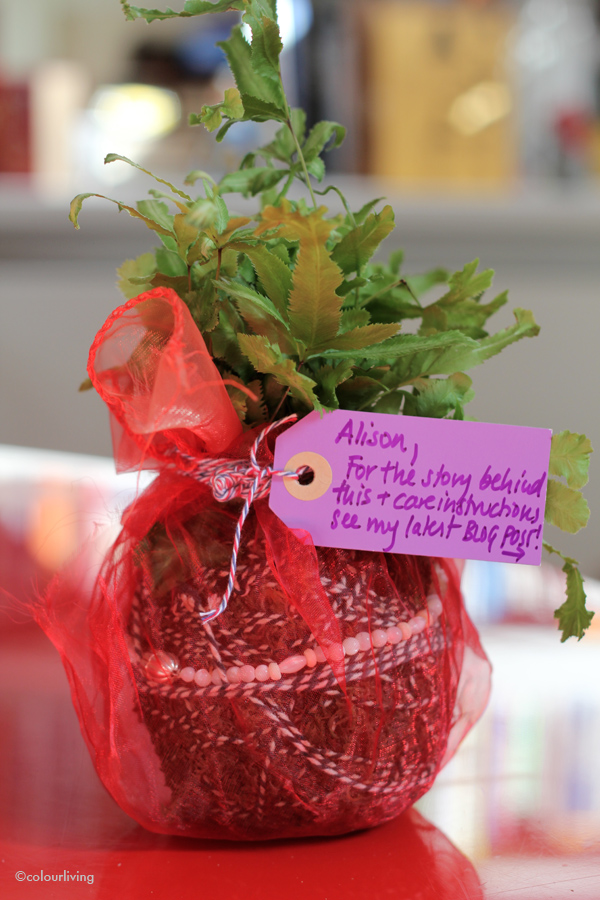 urban jungle bloggers - giving a green gift